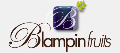 Blampin Fruits
